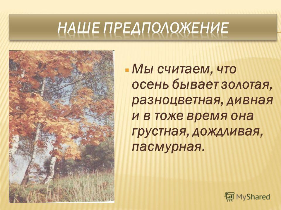 Мы считаем, что осень бывает золотая, разноцветная, дивная и в тоже время она грустная, дождливая, пасмурная.