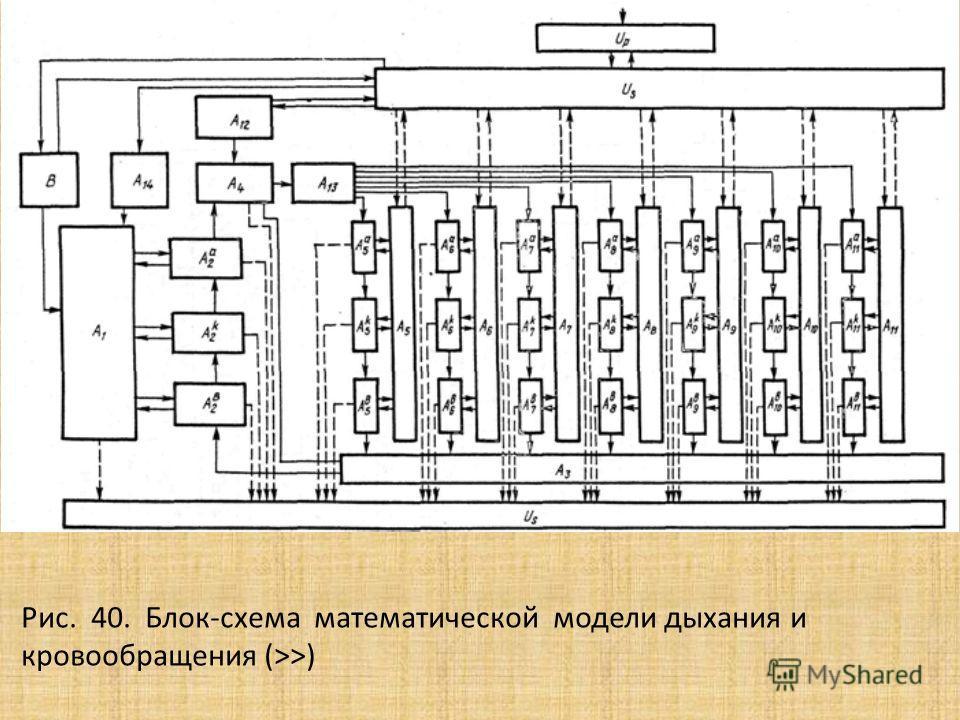 Рис. 40. Блок-схема математической модели дыхания и кровообращения (>>)