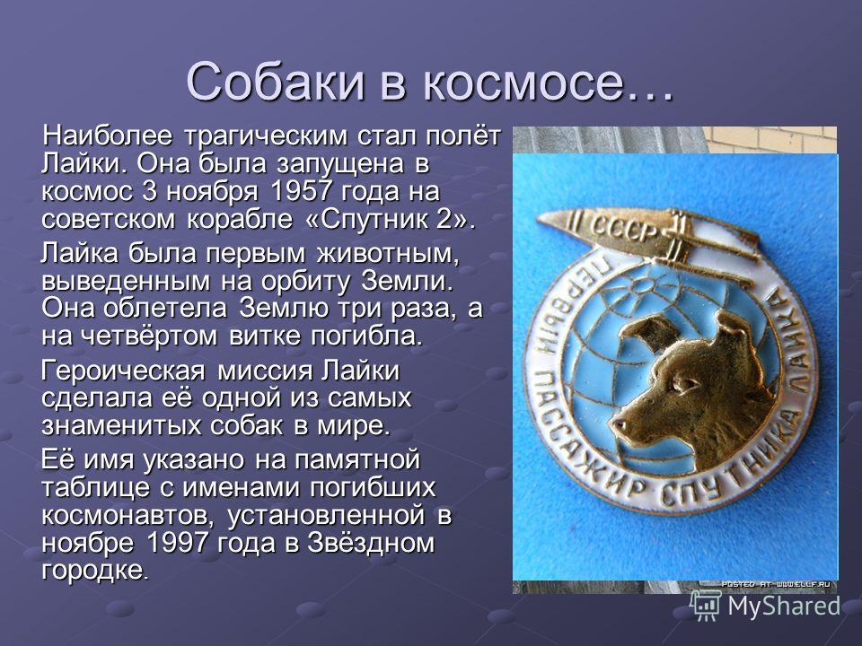 Наиболее трагическим стал полёт Лайки. Она была запущена в космос 3 ноября 1957 года на советском корабле «Спутник 2». Лайка была первым животным, выведенным на орбиту Земли. Она облетела Землю три раза, а на четвёртом витке погибла. Героическая мисс