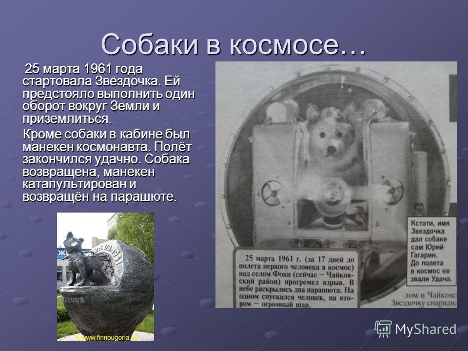 25 марта 1961 года стартовала Звёздочка. Ей предстояло выполнить один оборот вокруг Земли и приземлиться. Кроме собаки в кабине был манекен космонавта. Полёт закончился удачно. Собака возвращена, манекен катапультирован и возвращён на парашюте.