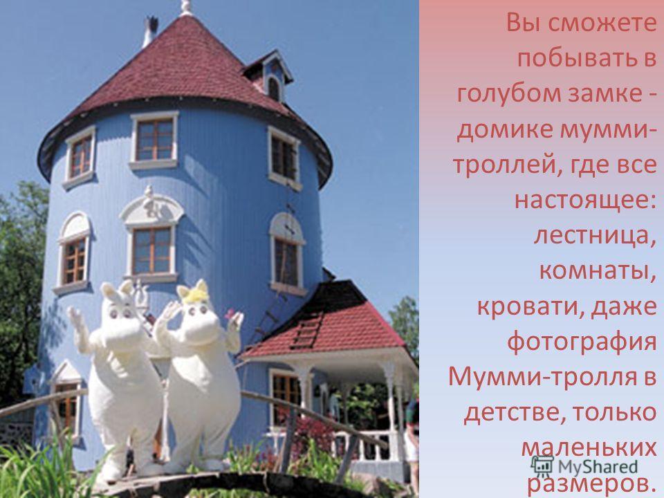 Вы сможете побывать в голубом замке - домике мумми- троллей, где все настоящее: лестница, комнаты, кровати, даже фотография Мумми-тролля в детстве, только маленьких размеров.