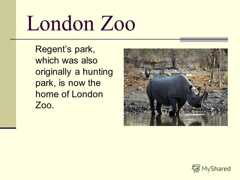 London Zoo Regents park, which was also originally a hunting park, is now the home of London Zoo.