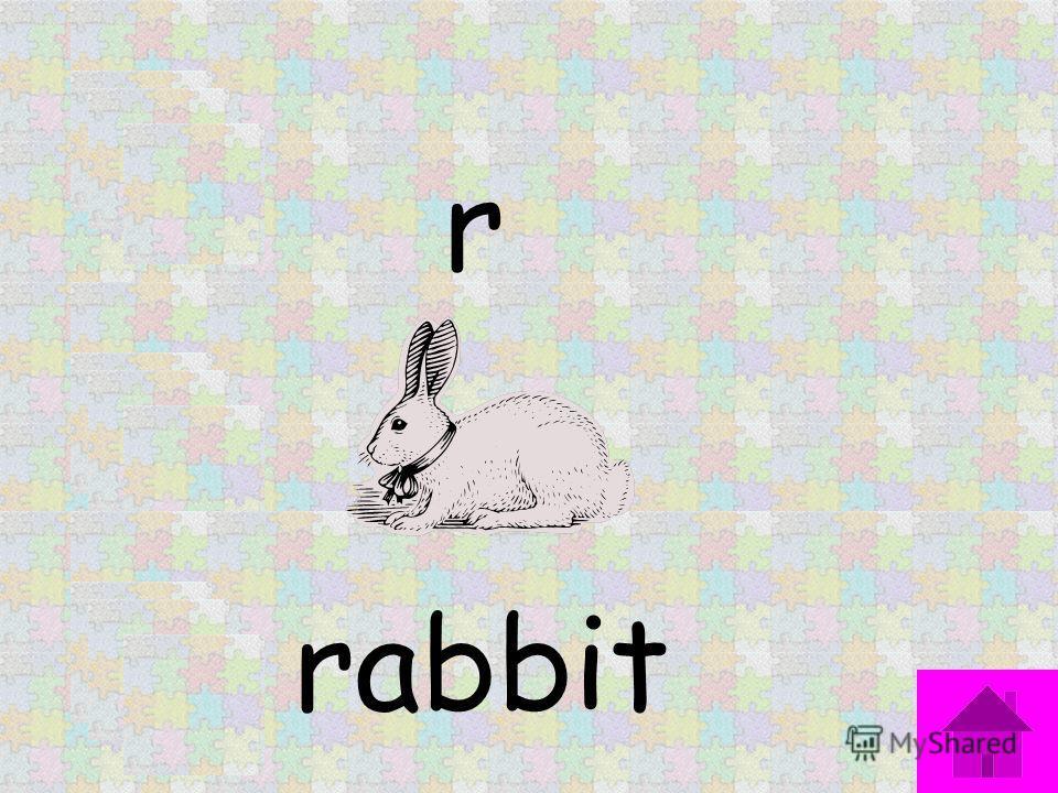 r rabbit