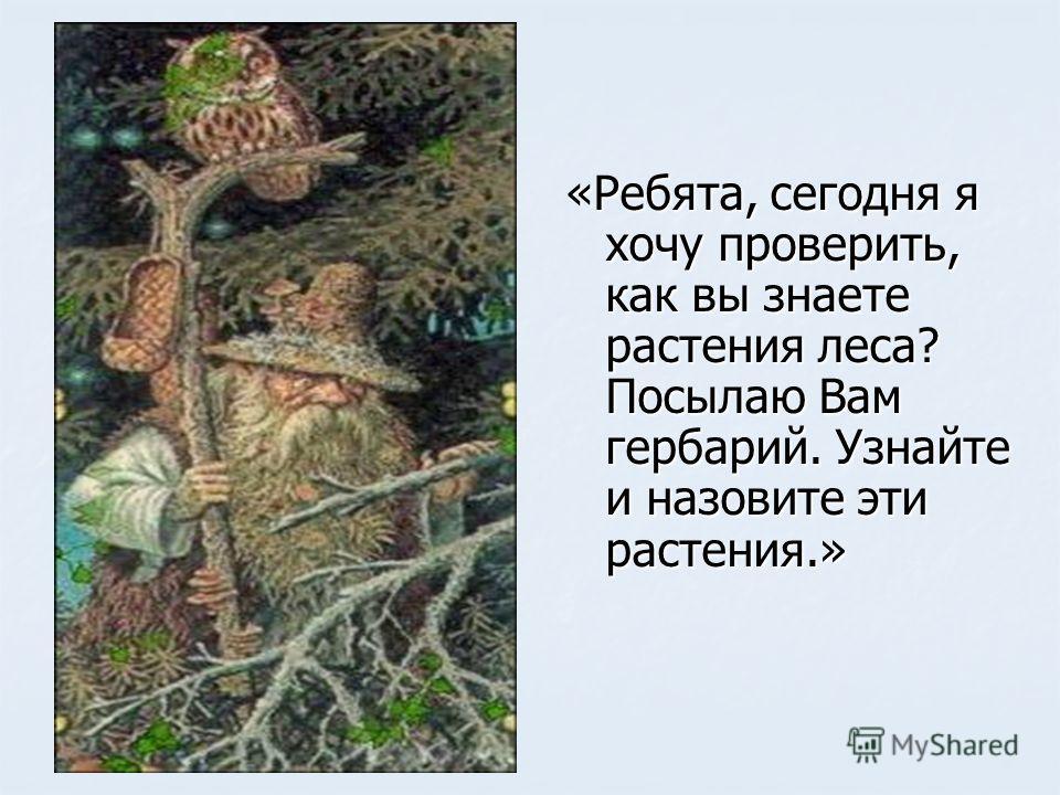 «Ребята, сегодня я хочу проверить, как вы знаете растения леса? Посылаю Вам гербарий. Узнайте и назовите эти растения.»