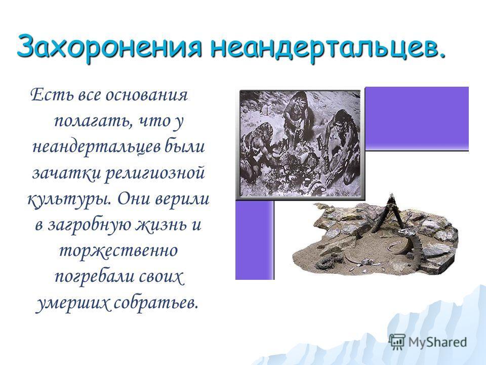 Захоронения неандертальцев. Есть все основания полагать, что у неандертальцев были зачатки религиозной культуры. Они верили в загробную жизнь и торжественно погребали своих умерших собратьев.