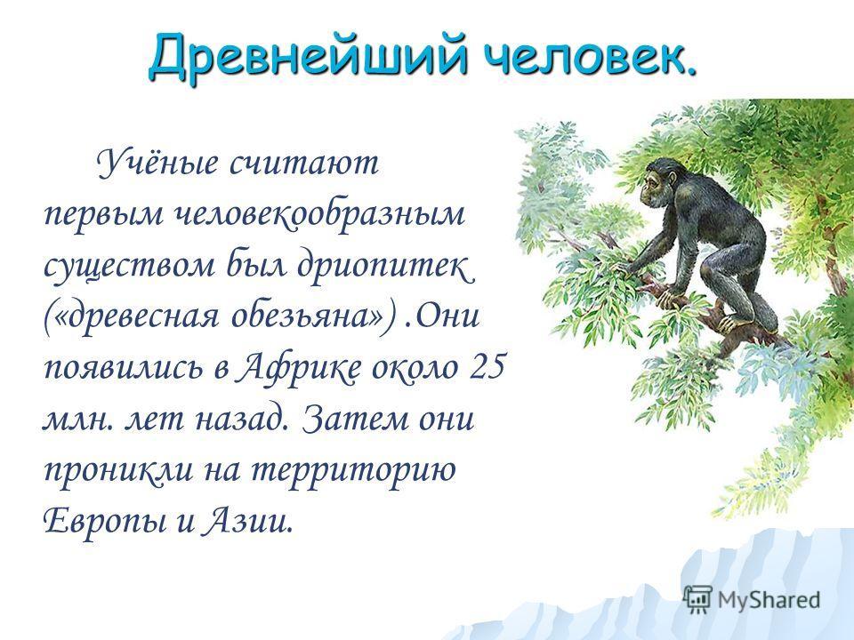 Древнейший человек. Учёные считают первым человекообразным существом был дриопитек («древесная обезьяна»).Они появились в Африке около 25 млн. лет назад. Затем они проникли на территорию Европы и Азии.