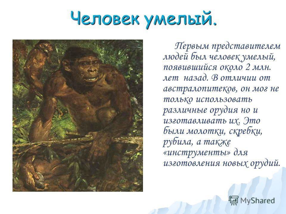 Человек умелый. Первым представителем людей был человек умелый, появившийся около 2 млн. лет назад. В отличии от австралопитеков, он мог не только использовать различные орудия но и изготавливать их. Это были молотки, скребки, рубила, а также «инстру