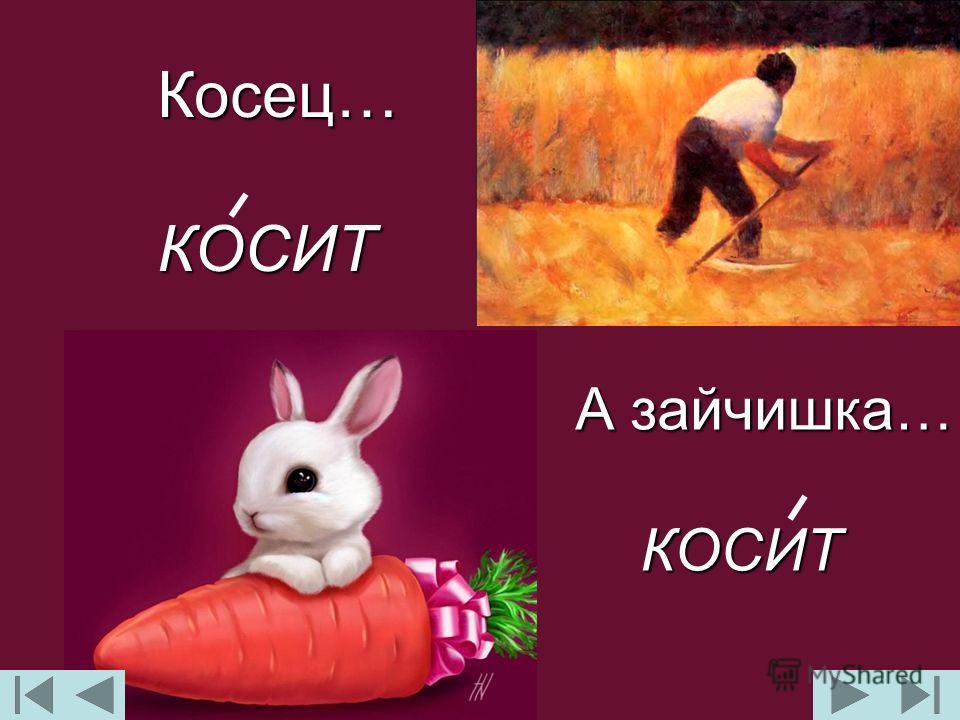 Косец…КОСИТ А зайчишка… КОСИТ КОСИТ