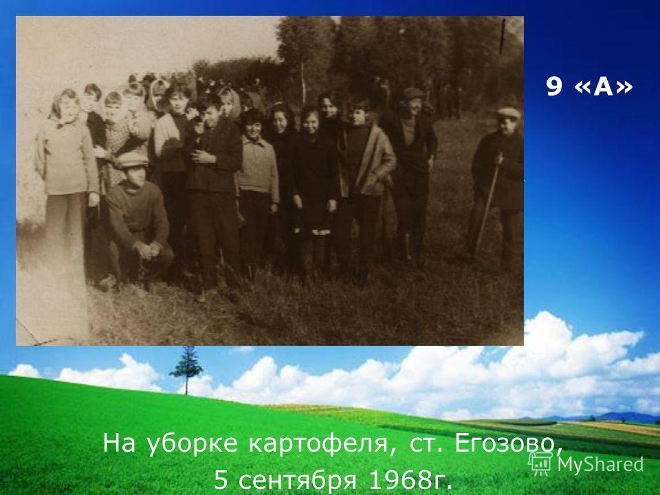 LOGO 9 «А» На уборке картофеля, ст. Егозово, 5 сентября 1968г.