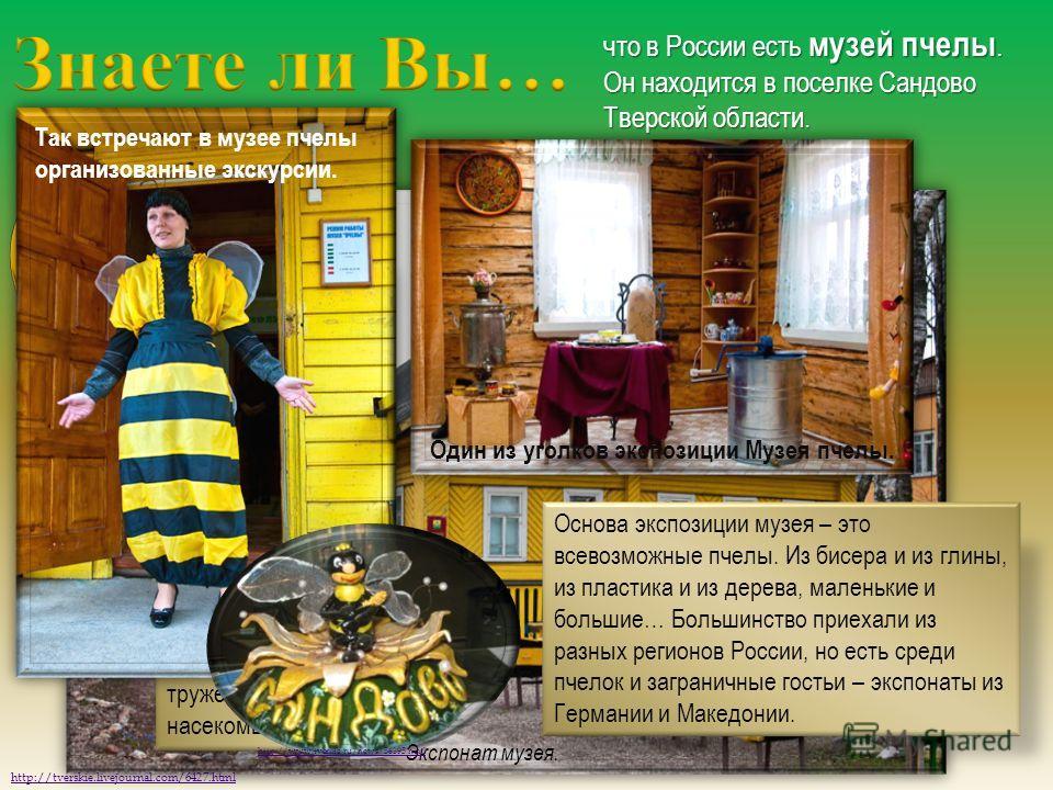 что в России есть музей пчелы. Он находится в поселке Сандово Тверской области. http://tverskie.livejournal.com/6427.html Неспроста музей расположился именно здесь. В этом районе Тверской области уже очень давно и плодотворно жители занимаются пчелов