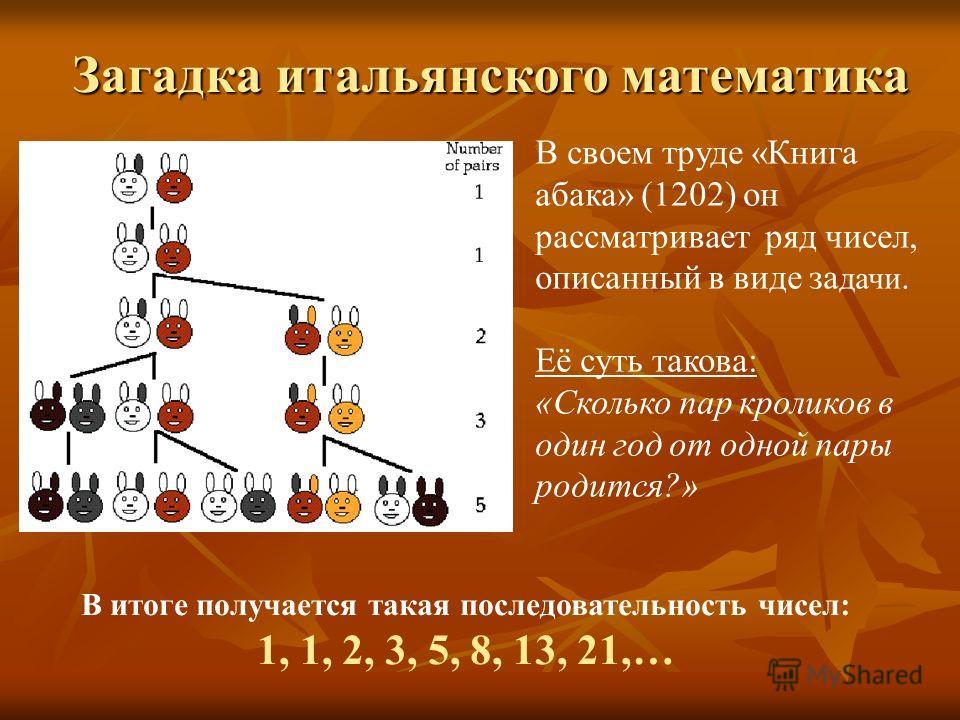 В своем труде «Книга абака» (1202) он рассматривает ряд чисел, описанный в виде за дачи. Её суть такова: «Сколько пар кроликов в один год от одной пары родится?» В итоге получается такая последовательность чисел: 1, 1, 2, 3, 5, 8, 13, 21,… Загадка ит