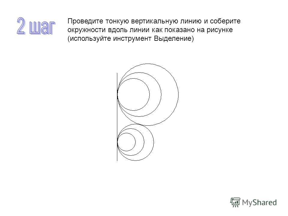 Проведите тонкую вертикальную линию и соберите окружности вдоль линии как показано на рисунке (используйте инструмент Выделение)