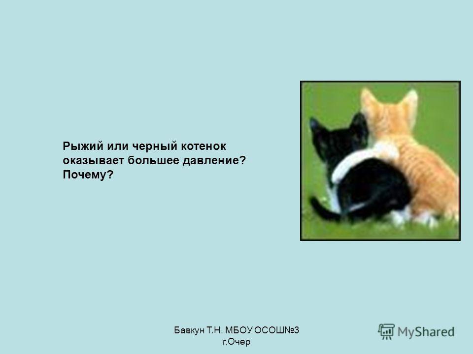Бавкун Т.Н. МБОУ ОСОШ3 г.Очер Рыжий или черный котенок оказывает большее давление? Почему?