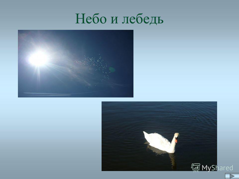 Небо и лебедь