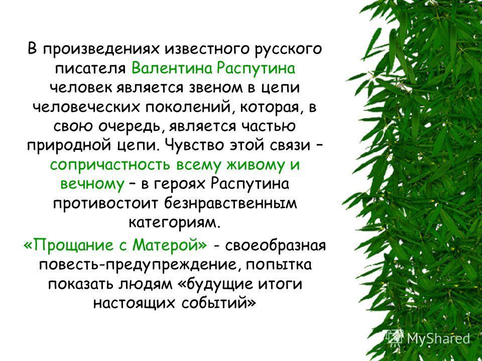 В произведениях известного русского писателя Валентина Распутина человек является звеном в цепи человеческих поколений, которая, в свою очередь, является частью природной цепи. Чувство этой связи – сопричастность всему живому и вечному – в героях Рас