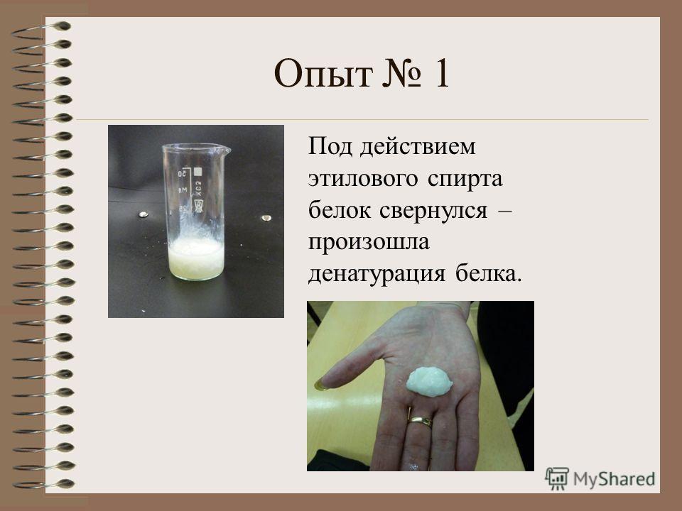 Опыт 1 Под действием этилового спирта белок свернулся – произошла денатурация белка.