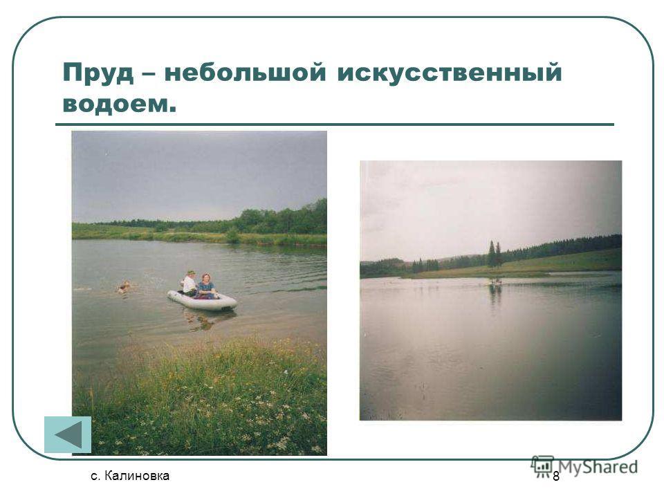 с. Калиновка 8 Пруд – небольшой искусственный водоем.