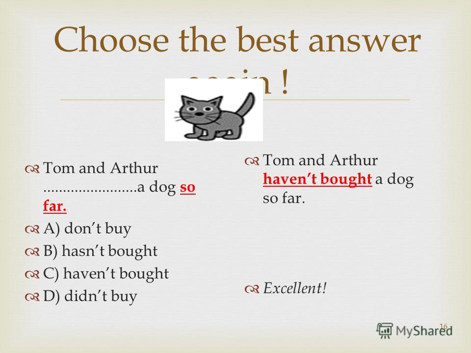 16 Choose the best answer again ! Tom and Arthur........................a dog so far. A) dont buy B) hasnt bought C) havent bought D) didnt buy Tom and Arthur havent bought a dog so far. Excellent!