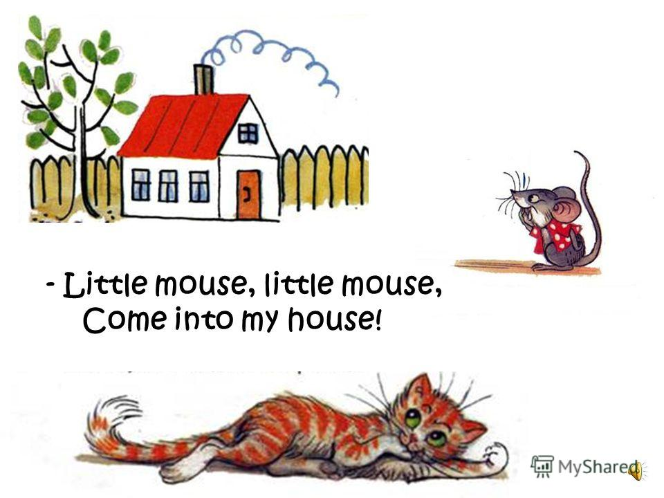 - Little cat, little cat, I have no flat, Im a poor mouse, I have no house!