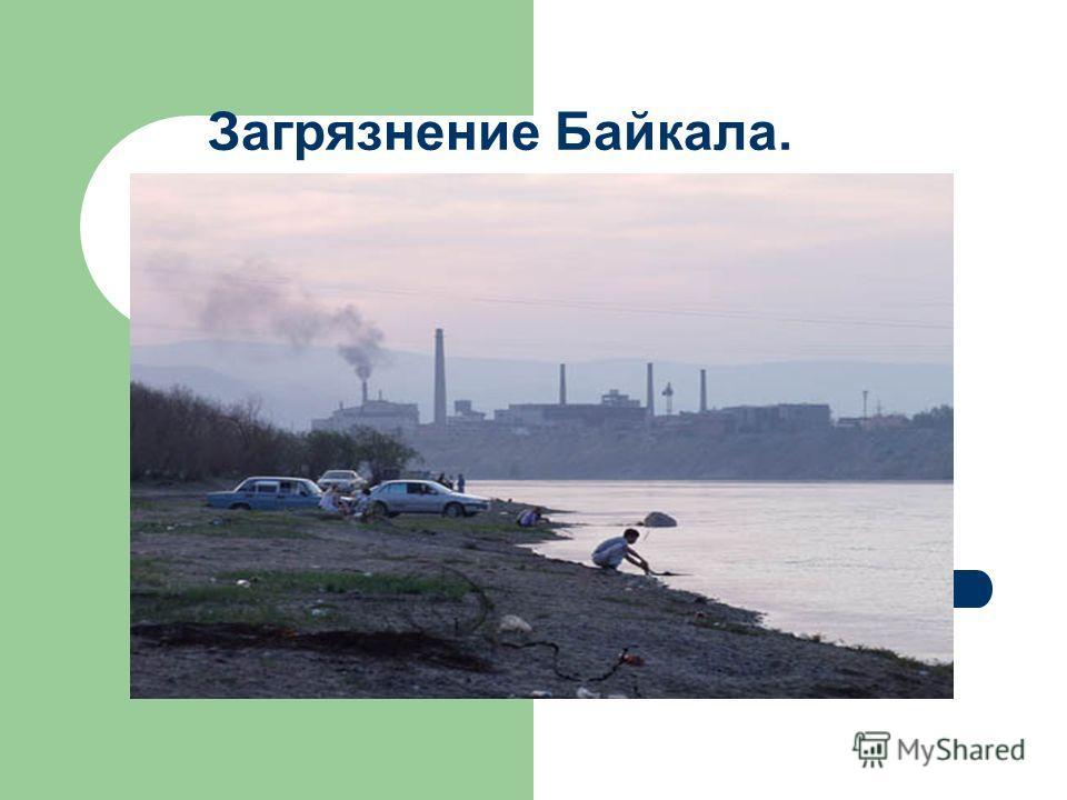 Загрязнение Байкала.