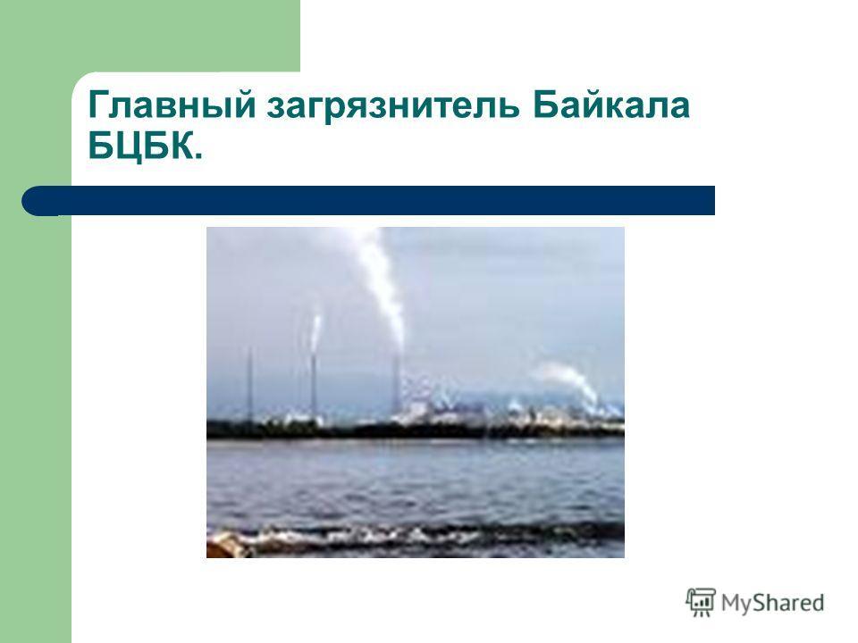 Главный загрязнитель Байкала БЦБК.