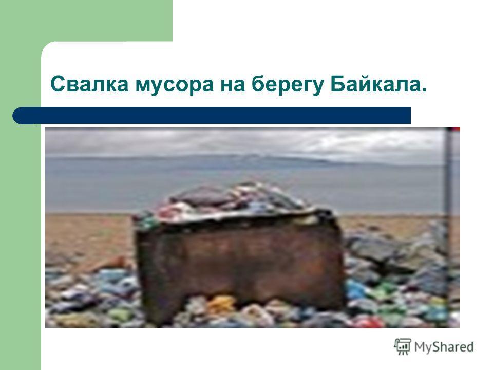 Свалка мусора на берегу Байкала.