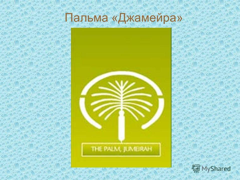 Пальма «Джамейра»