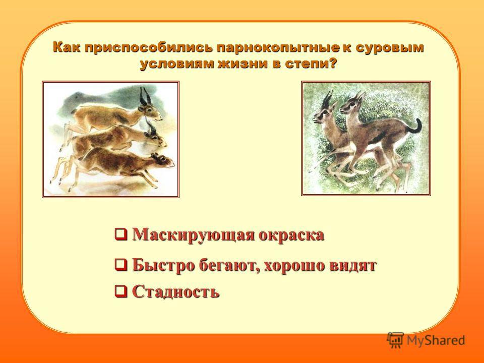 Как приспособились парнокопытные к суровым условиям жизни в степи? Стадность Маскирующая окраска Быстро бегают, хорошо видят