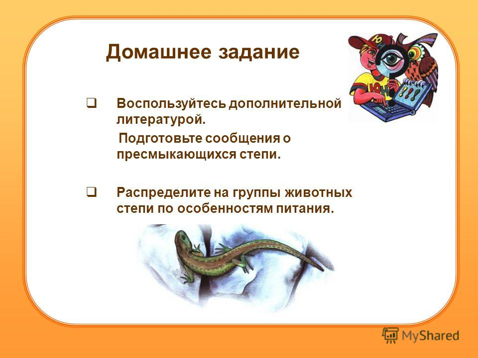 Домашнее задание Воспользуйтесь дополнительной литературой. Подготовьте сообщения о пресмыкающихся степи. Распределите на группы животных степи по особенностям питания.