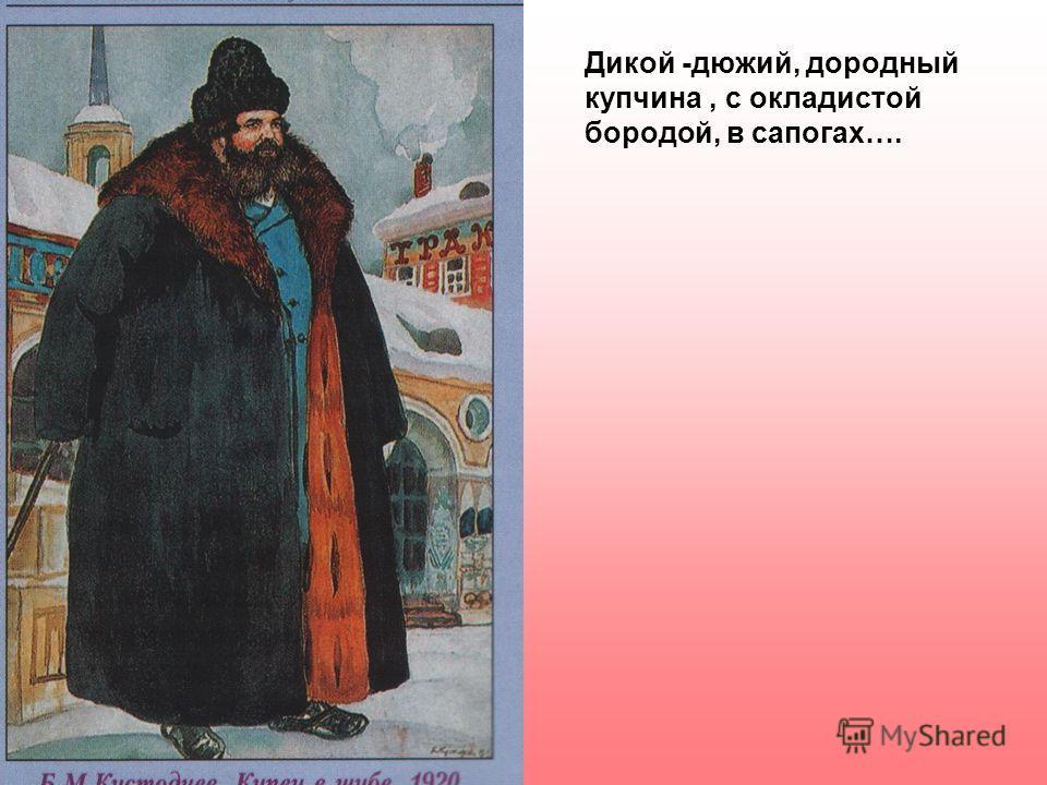 Дикой -дюжий, дородный купчина, с окладистой бородой, в сапогах….