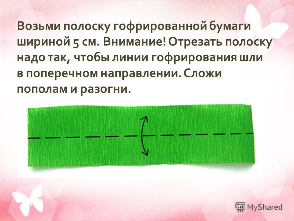 Возьми полоску гофрированной бумаги шириной 5 см. Внимание ! Отрезать полоску надо так, чтобы линии гофрирования шли в поперечном направлении. Сложи пополам и разогни.
