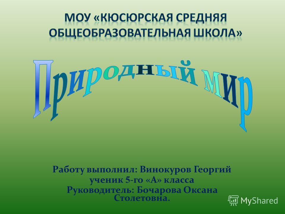 Работу выполнил: Винокуров Георгий ученик 5 -го «А» класса Руководитель: Бочарова Оксана Столетовна.