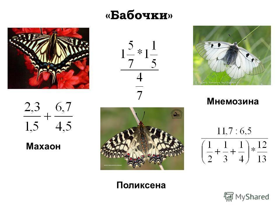 Махаон Поликсена Мнемозина