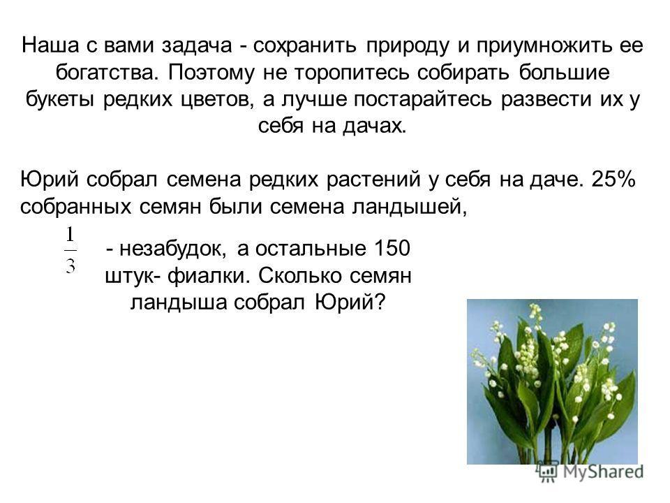 Наша с вами задача - сохранить природу и приумножить ее богатства. Поэтому не торопитесь собирать большие букеты редких цветов, а лучше постарайтесь развести их у себя на дачах. Юрий собрал семена редких растений у себя на даче. 25% собранных семян б