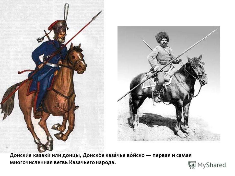 Донски́е казаки́ или донцы, Донско́е каза́чье во́йско первая и самая многочисленная ветвь Казачьего народа.