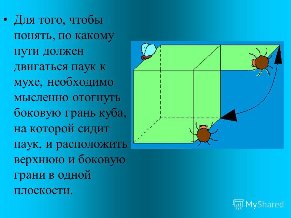 Задача про муху. На рисунке изображен прозрачный куб. На поверхности этого куба находится паук, который пристально смотрит сквозь него на сидящую на другой грани куба муху. Для того, чтобы поймать муху, пауку нужно как можно скорее до нее добраться.