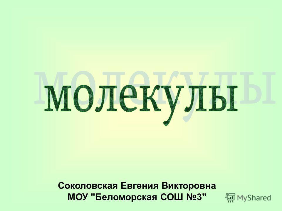 Соколовская Евгения Викторовна МОУ Беломорская СОШ 3