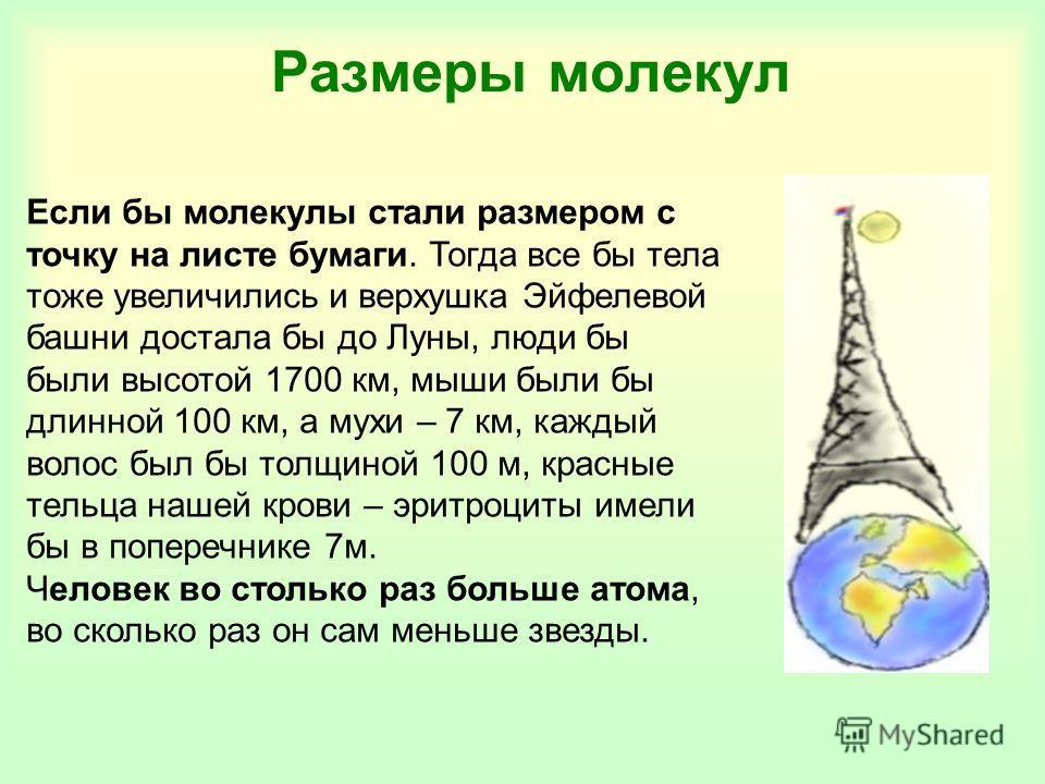Размеры молекул Если бы молекулы стали размером с точку на листе бумаги. Тогда все бы тела тоже увеличились и верхушка Эйфелевой башни достала бы до Луны, люди бы были высотой 1700 км, мыши были бы длинной 100 км, а мухи – 7 км, каждый волос был бы т