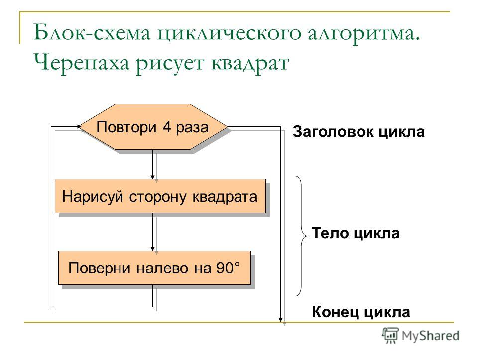 Блок-схема циклического алгоритма. Черепаха рисует квадрат Заголовок цикла Повтори 4 раза Нарисуй сторону квадрата Поверни налево на 90° Тело цикла Конец цикла