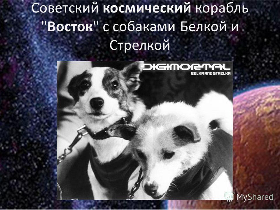 Советский космический корабль Восток с собаками Белкой и Стрелкой