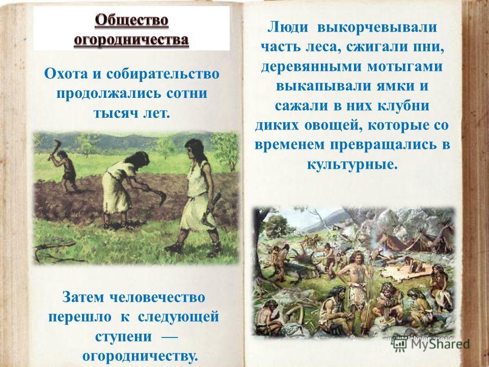 Охота и собирательство продолжались сотни тысяч лет. Затем человечество перешло к следующей ступени огородничеству. Люди выкорчевывали часть леса, сжигали пни, деревянными мотыгами выкапывали ямки и сажали в них клубни диких овощей, которые со времен