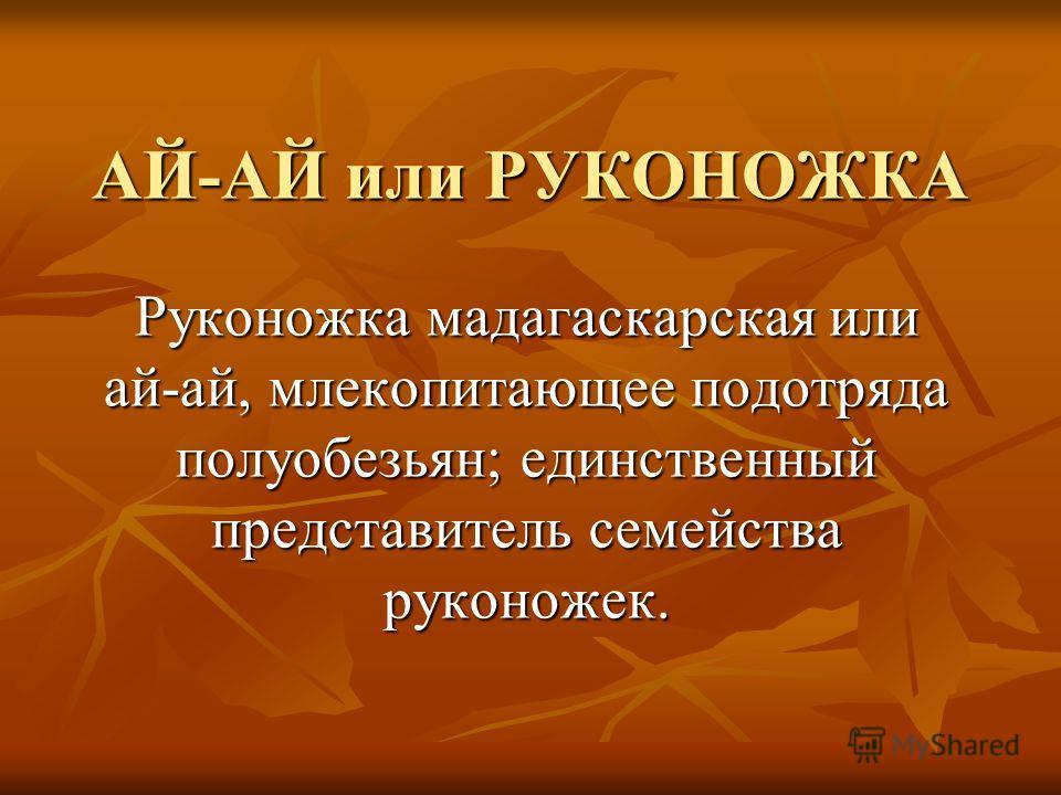 АЙ-АЙ или РУКОНОЖКА Руконожка мадагаскарская или ай-ай, млекопитающее подотряда полуобезьян; единственный представитель семейства руконожек.