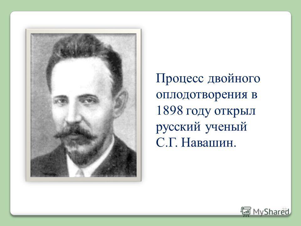 22 Процесс двойного оплодотворения в 1898 году открыл русский ученый С.Г. Навашин.
