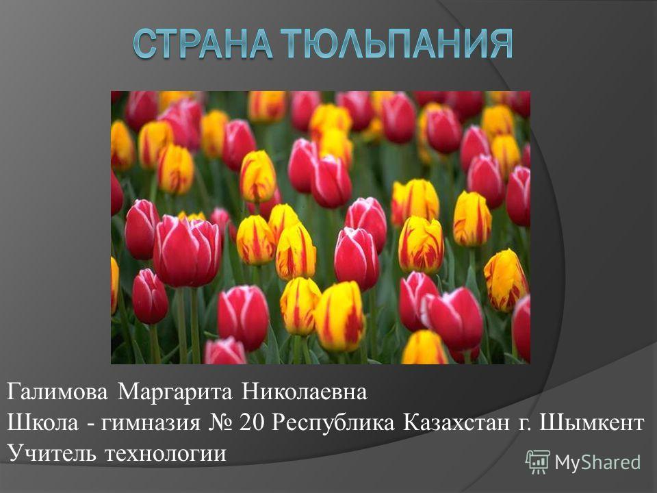 Галимова Маргарита Николаевна Школа - гимназия 20 Республика Казахстан г. Шымкент Учитель технологии