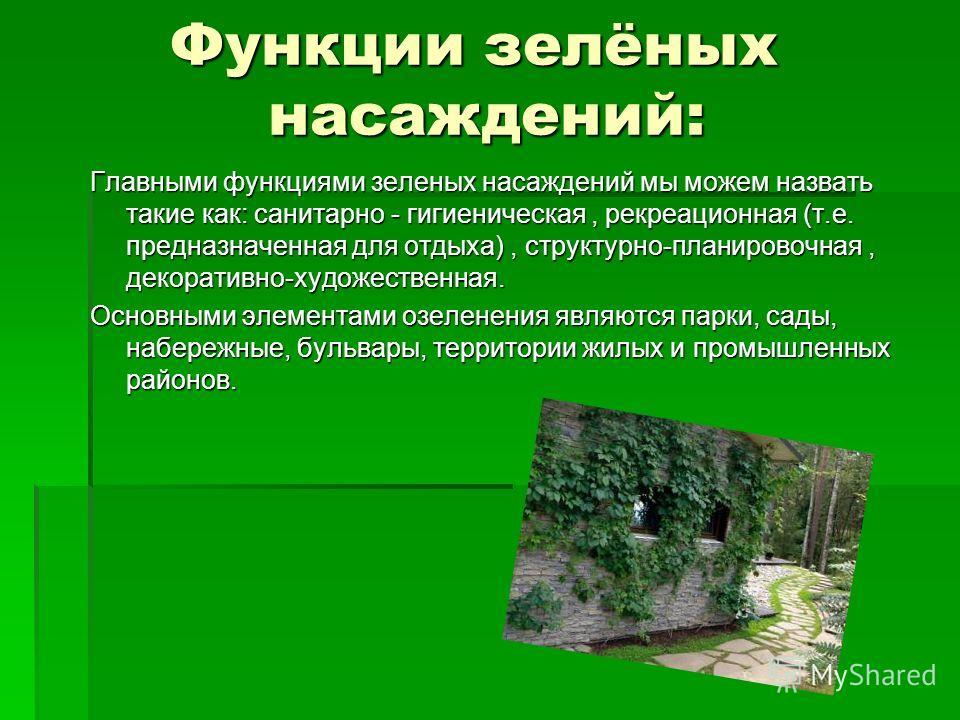 Функции зелёных насаждений: Функции зелёных насаждений: Главными функциями зеленых насаждений мы можем назвать такие как: санитарно - гигиеническая, рекреационная (т.е. предназначенная для отдыха), структурно-планировочная, декоративно-художественная
