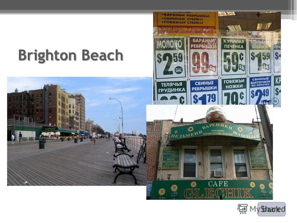 Brighton Beach back