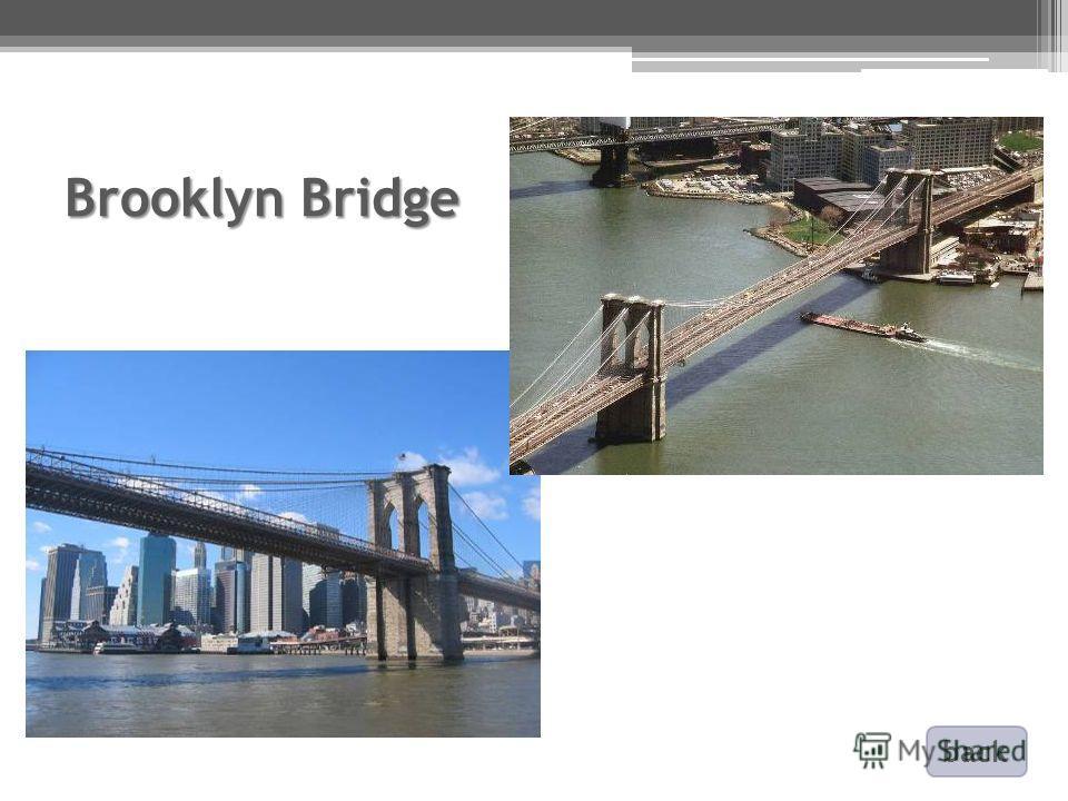 Brooklyn Bridge back
