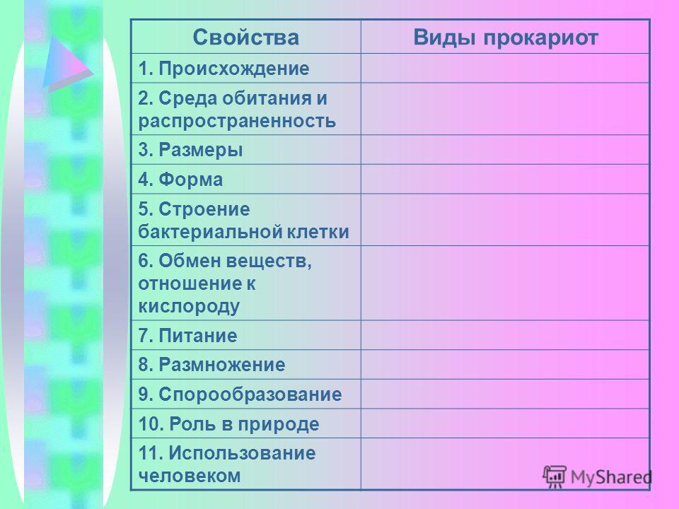 СвойстваВиды прокариот 1. Происхождение 2. Среда обитания и распространенность 3. Размеры 4. Форма 5. Строение бактериальной клетки 6. Обмен веществ, отношение к кислороду 7. Питание 8. Размножение 9. Спорообразование 10. Роль в природе 11. Использов