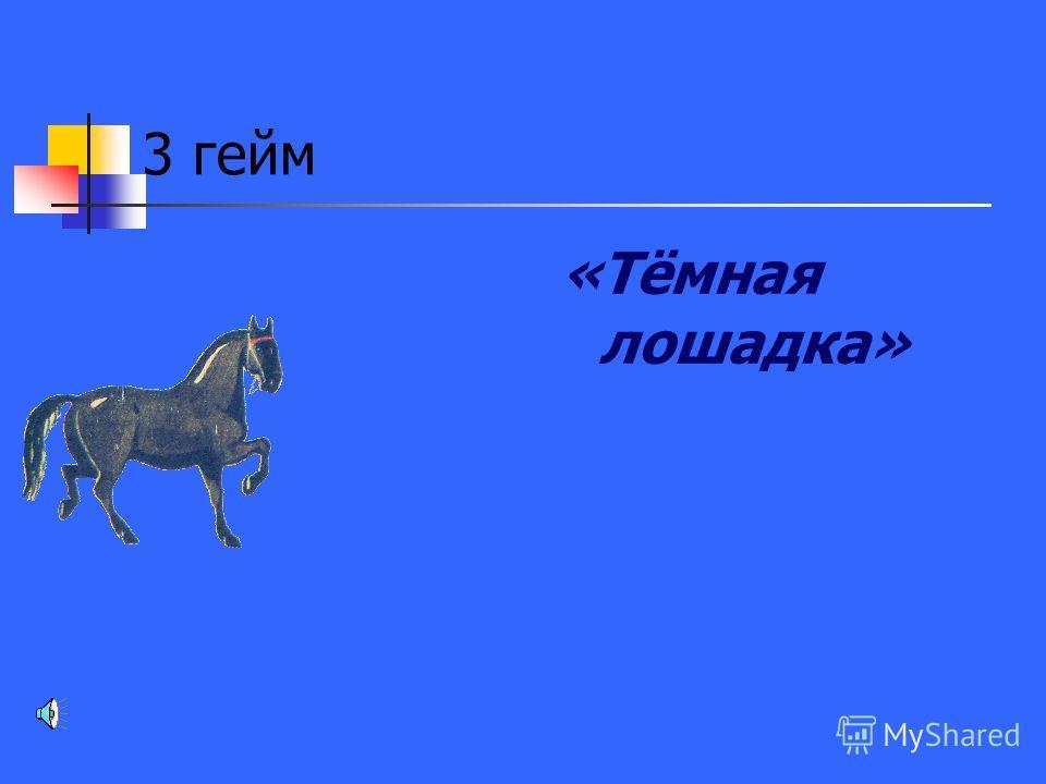 3 гейм «Тёмная лошадка»