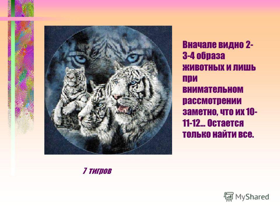 Вначале видно 2- 3-4 образа животных и лишь при внимательном рассмотрении заметно, что их 10- 11-12… Остается только найти все. 7 тигров